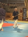 Naginata  en mouvement